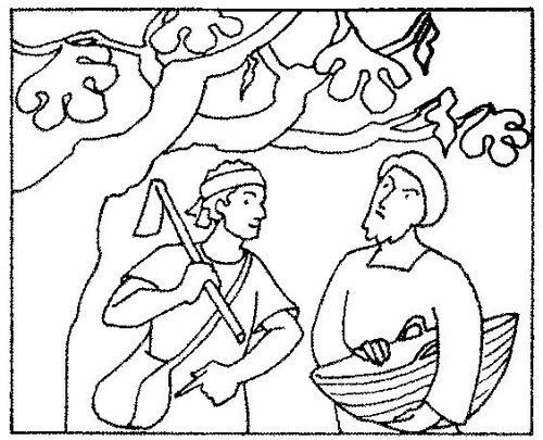Fig Tree Coloring Page