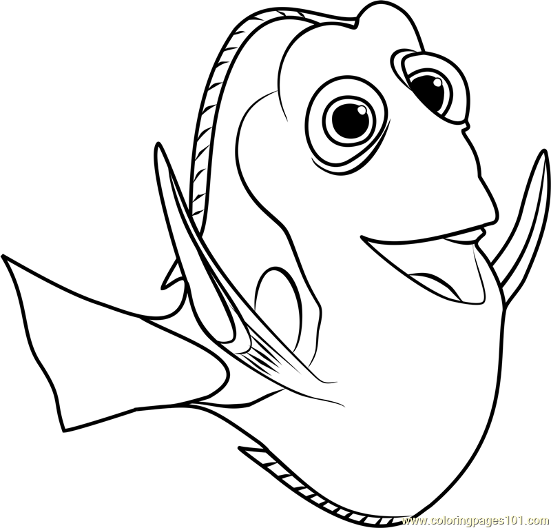 800x766 Dory Coloring Page