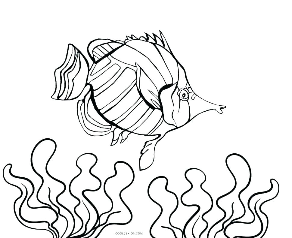 970x793 Finding Nemo Printable Coloring Pages Coloring Page Aquarium