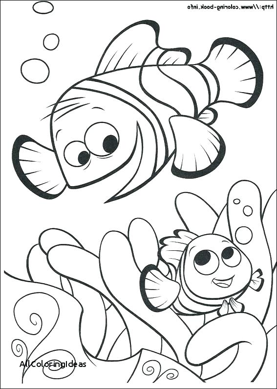 567x794 Finding Nemo Printable Coloring Pages Free Online Finding Nemo