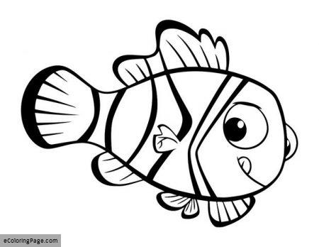 450x348 Nemo Coloring Pages Finding Nemo Coloring Pages Ecoloringpagecom