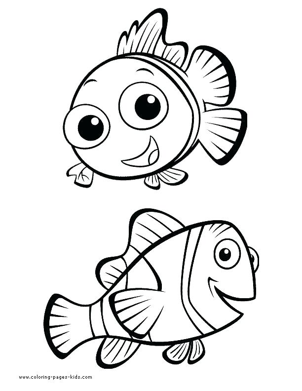 612x792 Marlin Dory Coloring Page From Finding Category Finding Marlin