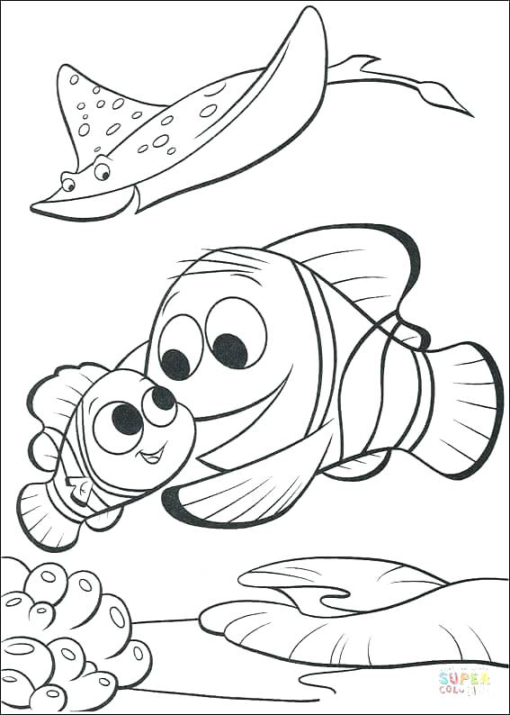 567x794 Finding Color Pages Click The Marlin Is Finding Coloring Free