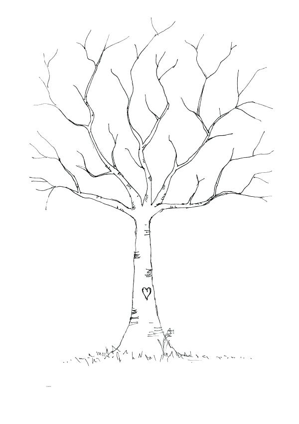 600x849 Charming Tree Without Leaves Coloring Page X Fall Tree Leaves