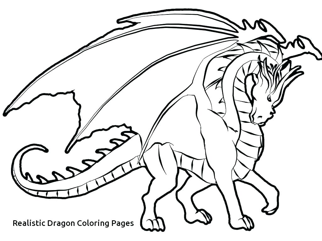 1024x767 Dragon Coloring Pages Realistic Fire Breathing Dragon Coloring
