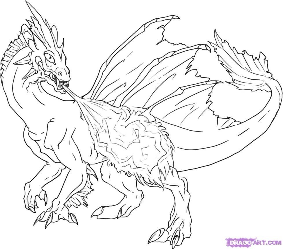 978x860 Fire Breathing Dragon Colouring Pages Grumpy Cat