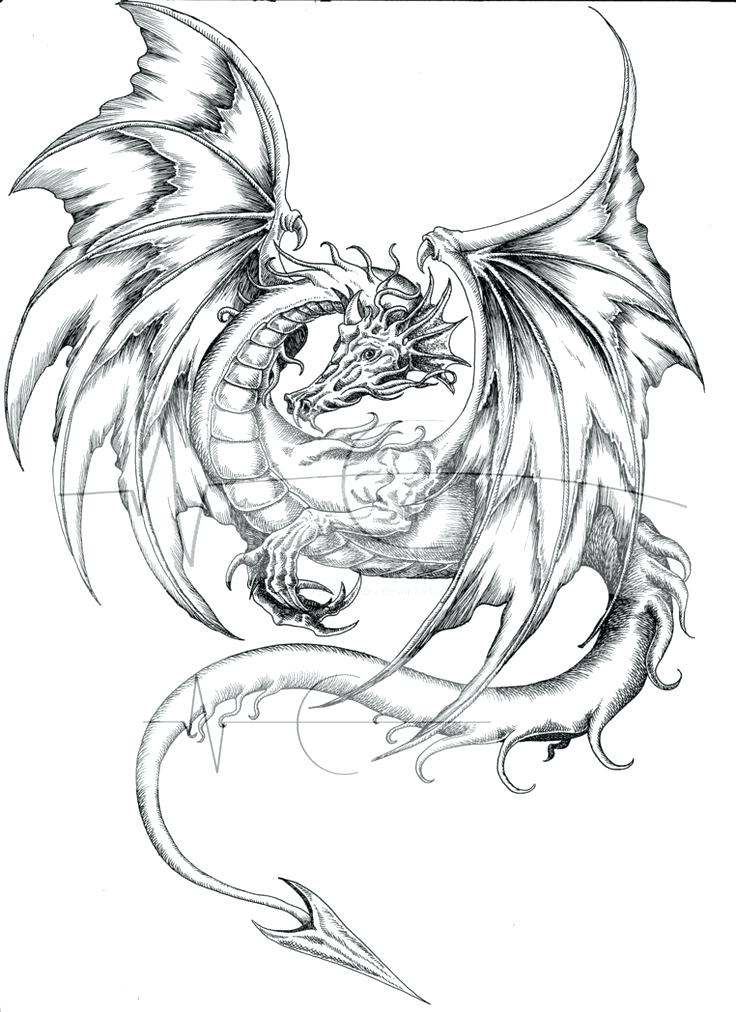 736x1012 Real Dragon Coloring Pages Fire Breathing Dragon Coloring Page