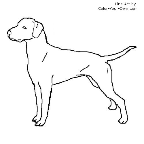 Fire Dog Coloring Page