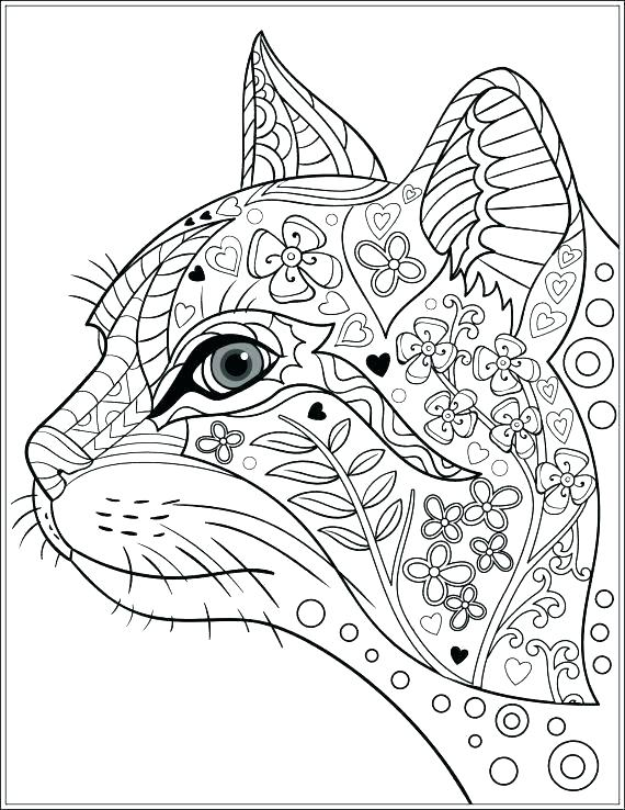 570x738 Cats Pictures To Color