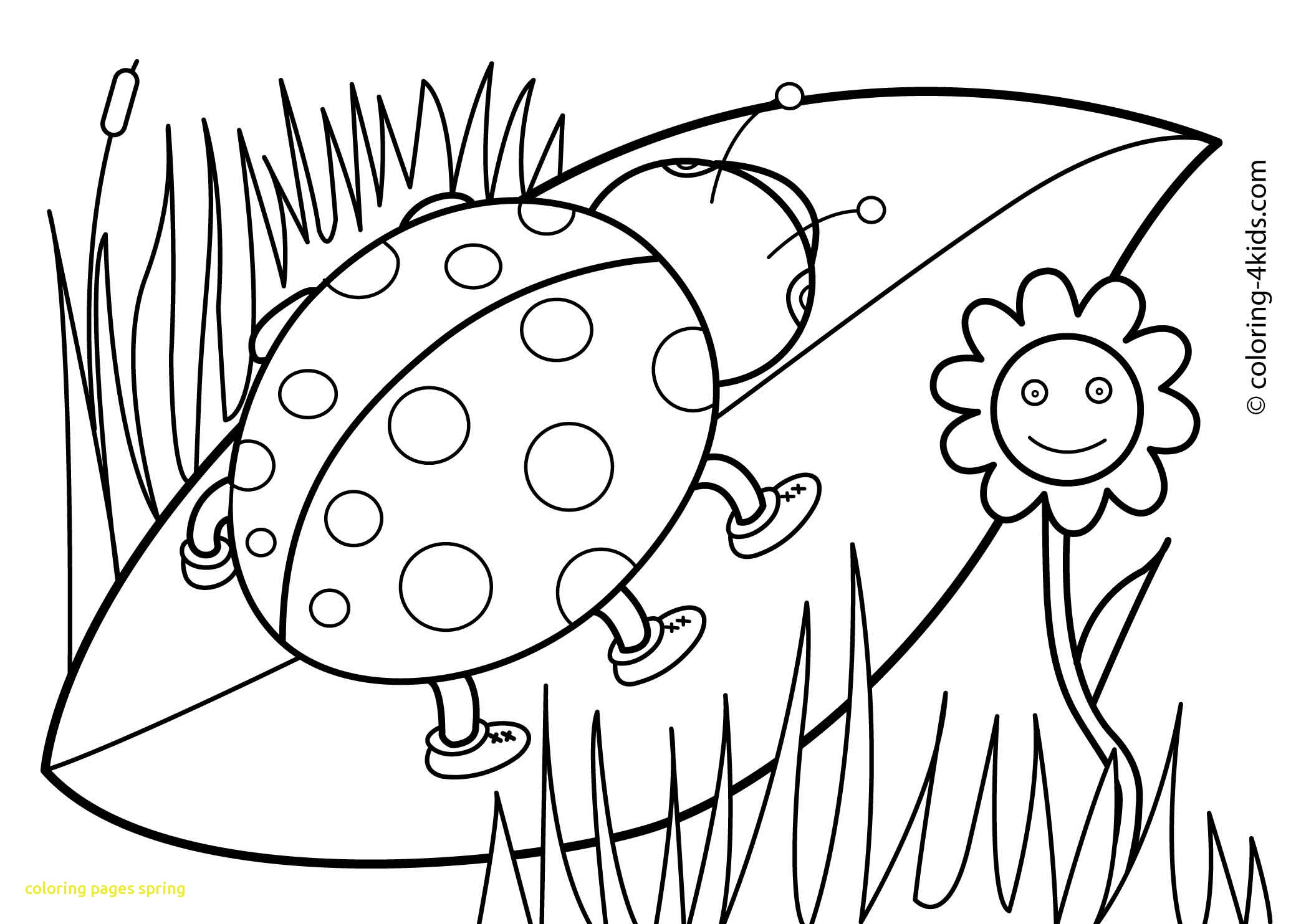 2079x1483 Fresh Coloring Pages Spring With Free Printable Spring Coloring