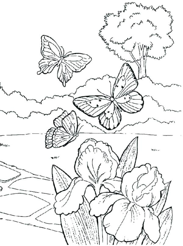 600x805 Springtime Coloring Pages Spring Coloring Pictures Spring Coloring