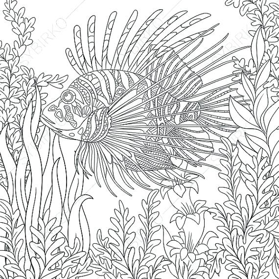 570x570 Fish Coloring Pages For Adults Devil Page Adult