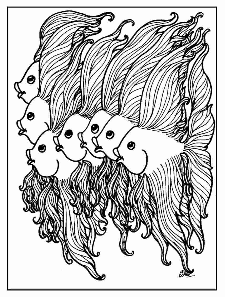 854x1130 Coloring Pages Adult Free Fish Realistic Within Olegratiy