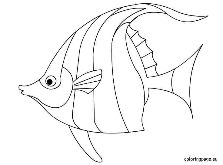 736x544 Cartoon Fish Coloring Pages Fish Images For Coloring Cartoon Fish
