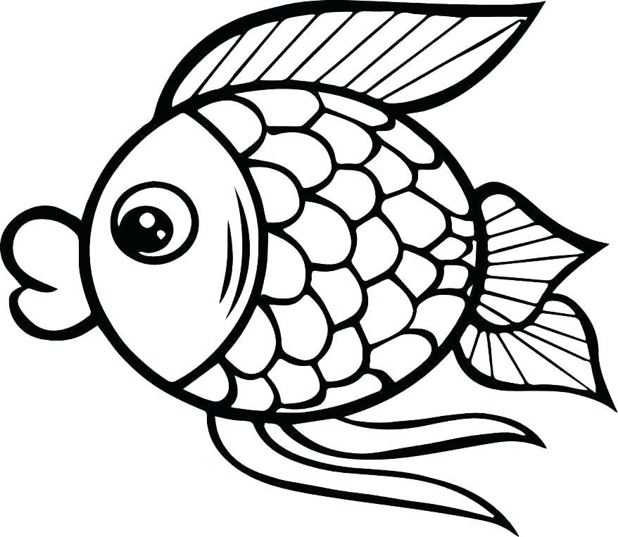878x763 Fish Coloring Page Fish Pictures To Color Fish Coloring Pages