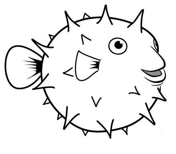 600x525 Puffer Fish, Happy Globefish Puffer Fish Coloring Page
