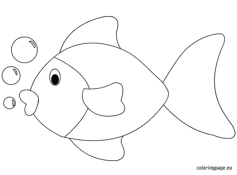 804x595 Marine Fish Coloring Pages