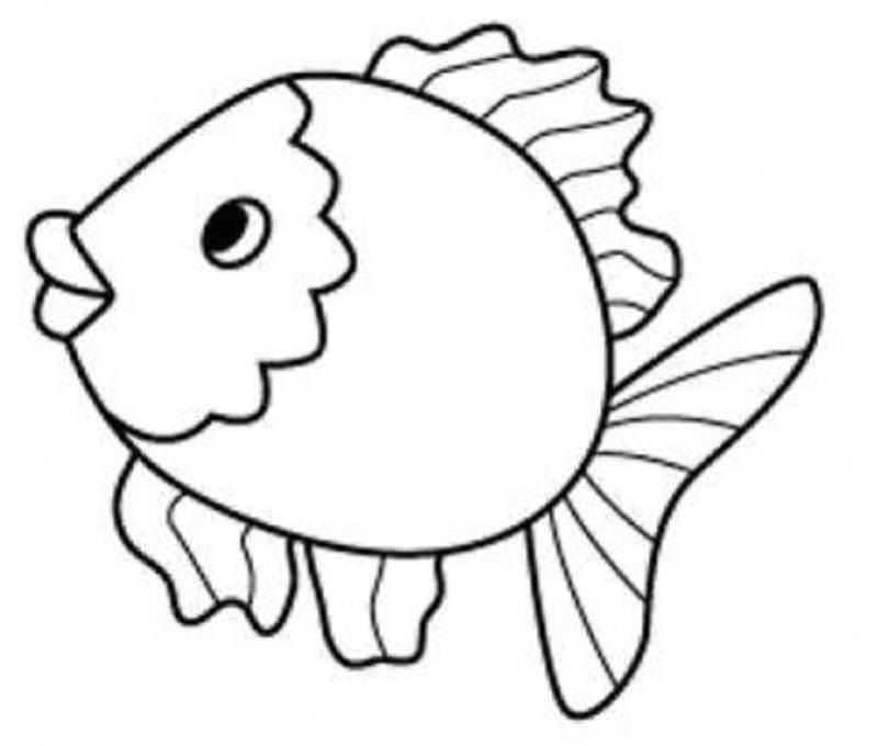800x680 Fish Coloring Pages For Kids