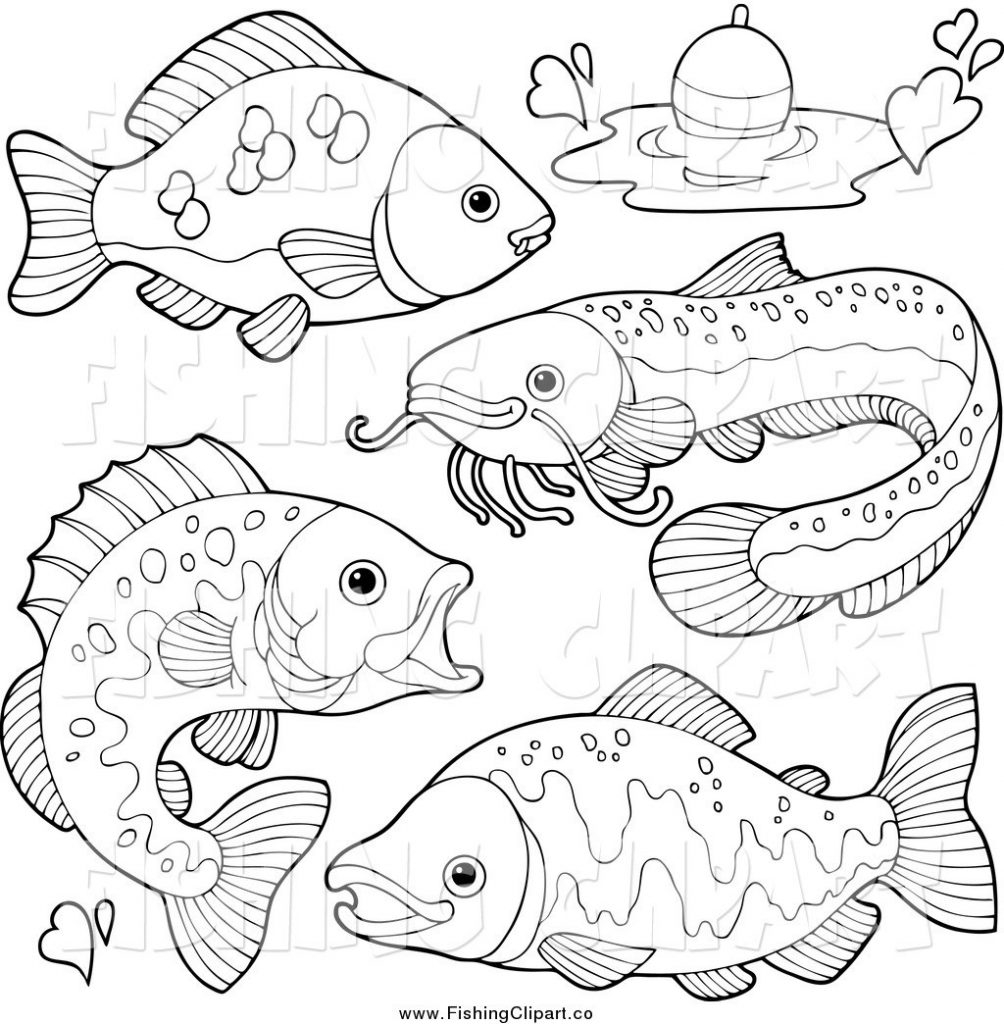 1004x1024 Freshwater Fish Coloring Pages Free Coloring For Kids