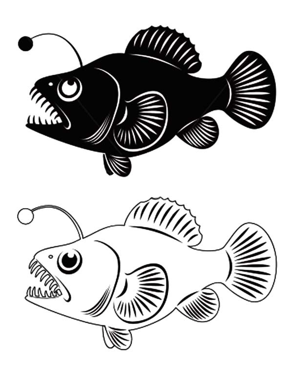 600x792 Angler Fish Clip Art Coloring Pages Best Place To Color