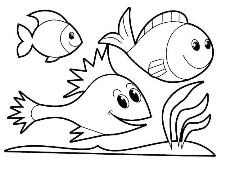 728x555 Ocean Fish Coloring Pages Fish Template To Color Rainbow Fish Fish