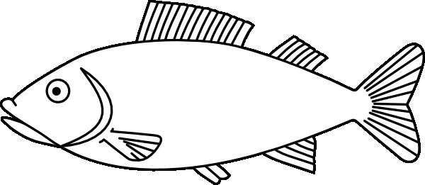 600x261 Coloring Page Fish Colouring