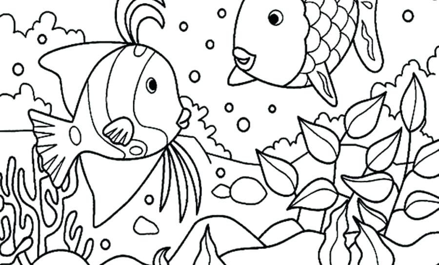 900x544 Coloring Page Of Fish Coloring Page Of Fish Fish Color Pages Fish
