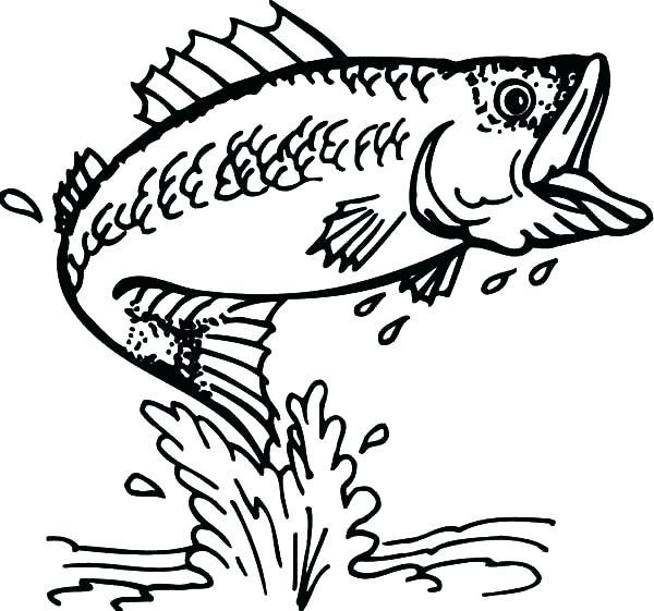600x561 Fish Coloring Page Elegant Fish Coloring Page About Remodel
