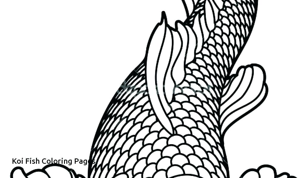 1024x600 Koi Fish Coloring Page Realistic Fish Coloring Pages Printable