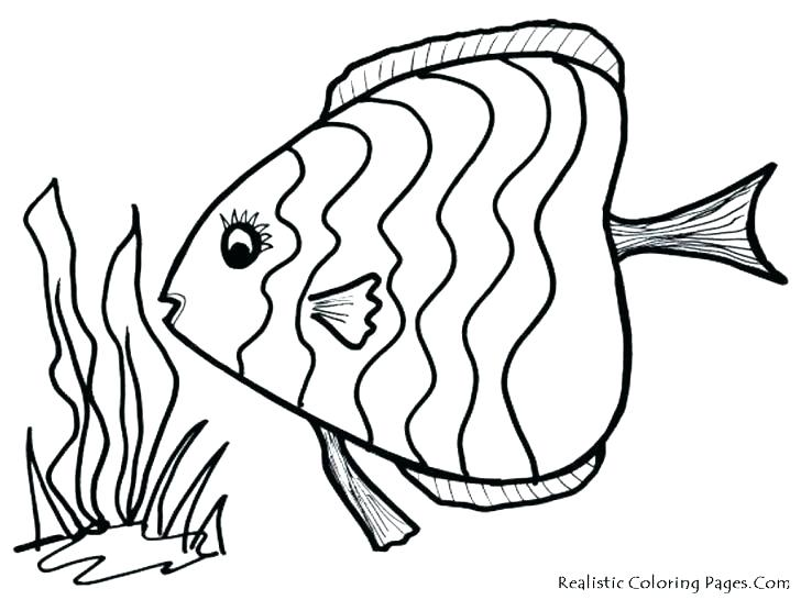 728x546 Printable Fish Coloring Pages Cute For Adults Free