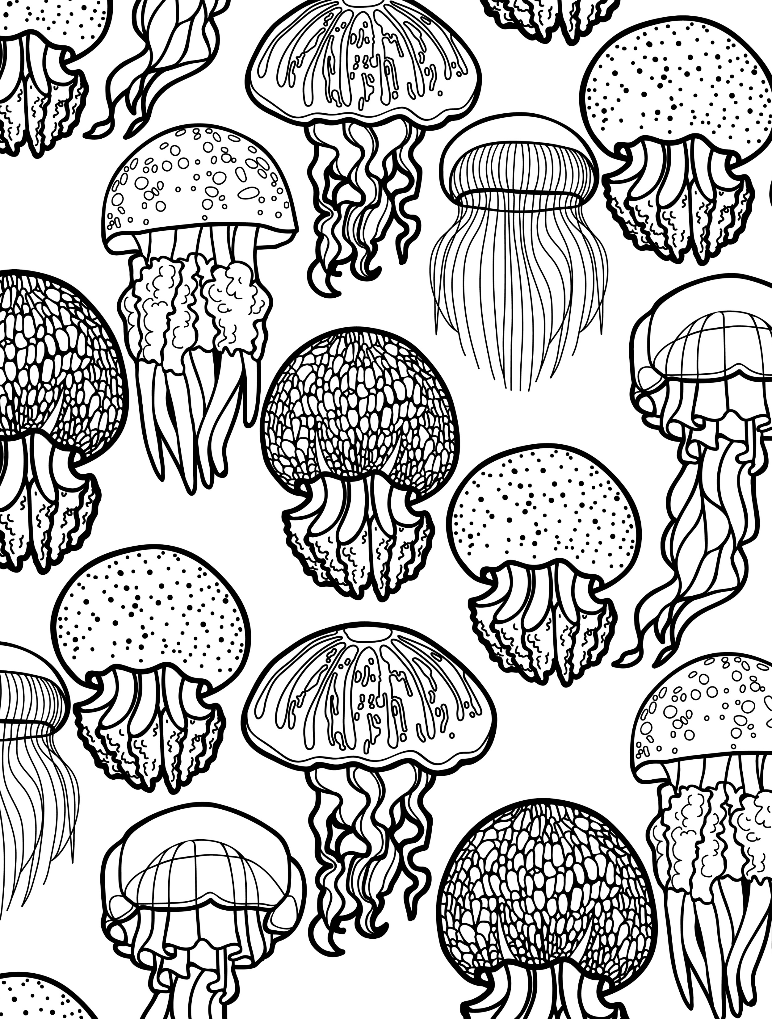 2500x3300 Excellent Adult Coloring Pages Nautical Cool Ocean For Adults Fish