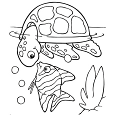 Fish Coloring Pages For Kids At Getdrawings Com Free For Personal