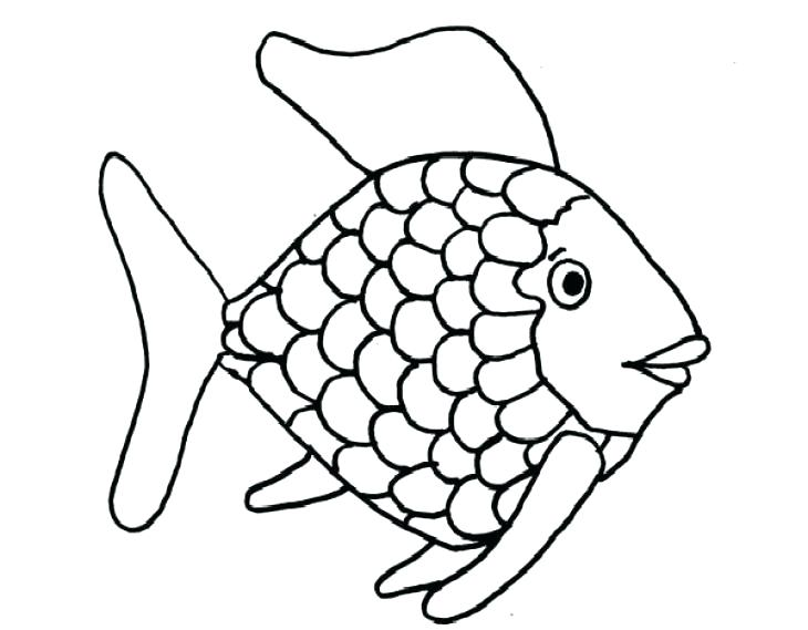 730x569 Rainbow Coloring Page Fish Coloring Pages Fish Coloring Page Fish