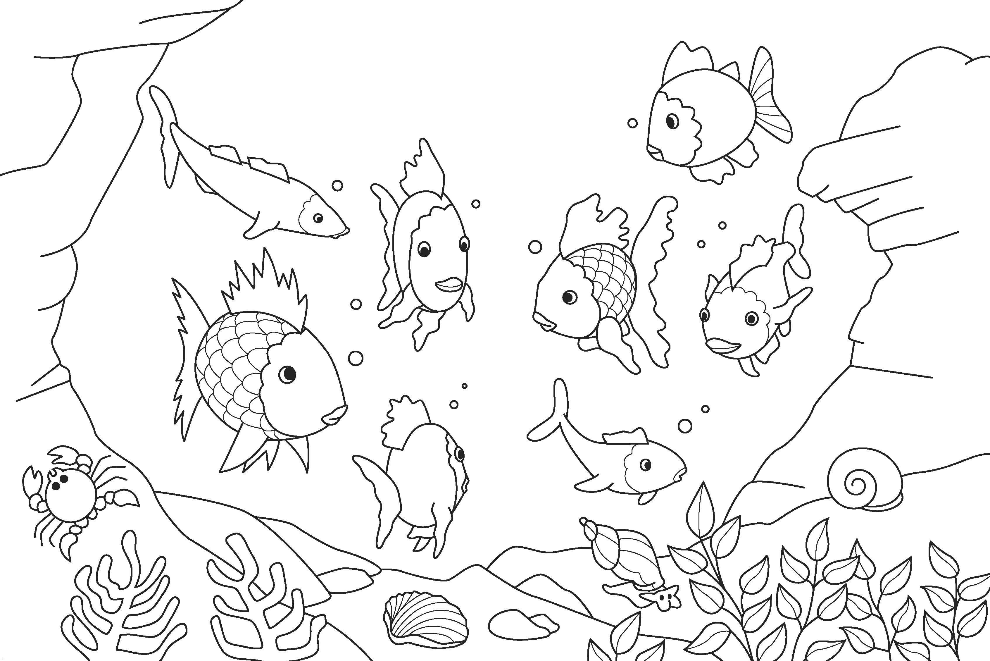 3386x2260 Easy Coloring Pages Of Fish Fresh Rainbow Fish Coloring Page