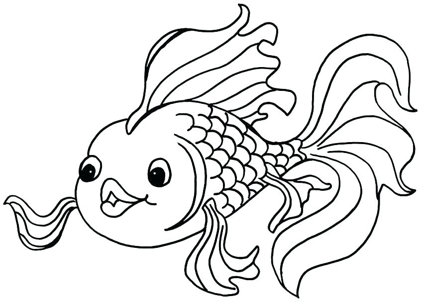 850x618 Fish Coloring Pages For Kindergarten Free Page Pin Drawn Gold