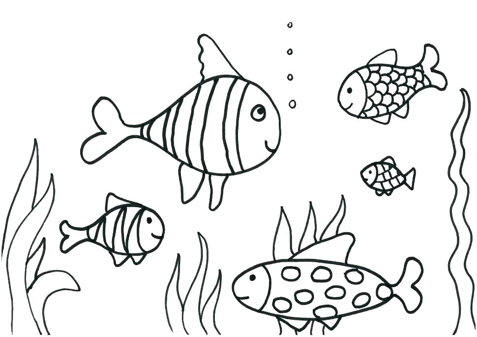 970x685 Fishing Coloring Pages Printable Realistic Fish Coloring Page
