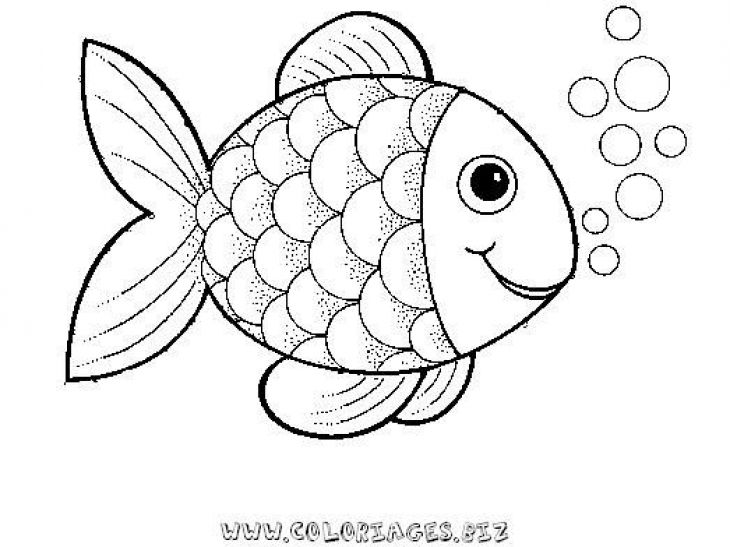 730x547 Preschool Rainbow Fish Coloring Sheet To Print For Free Creative