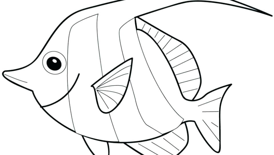 960x544 Coloring Page Of Fish Rainbow Fish Coloring Page Fish Template