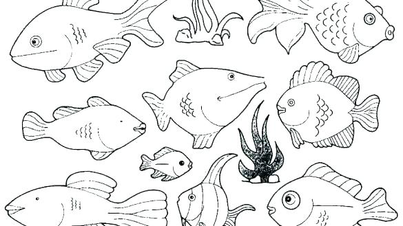585x329 Fish Coloring Page Fish Coloring Book Together With Free Printable
