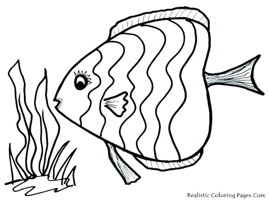 878x659 Cartoon Fish Coloring Pages Tropical Fish Coloring Pages Tropical