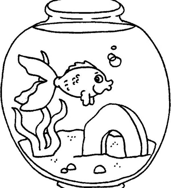 Fish Tank Coloring Page At Getdrawings Com Free For Personal Use