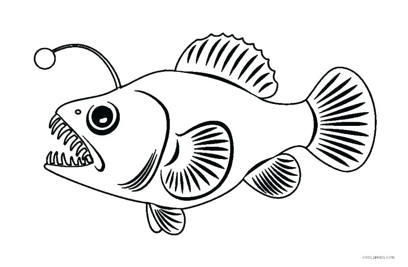 800x524 Fishing Coloring Page Coloring Pages Fish Fish Coloring Page