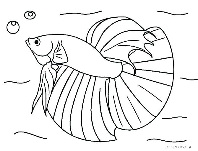 670x512 Fishing Color Pages Color Pages Of Fish Fishing Rod Coloring Pages