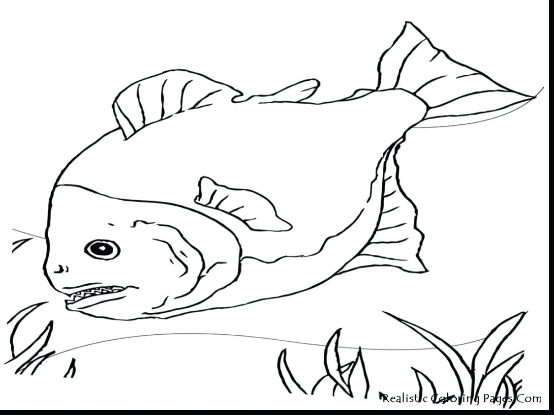 1126x844 Coloring Pages Thanksgiving Free Fly Fishing Rod Reel Bag Stock