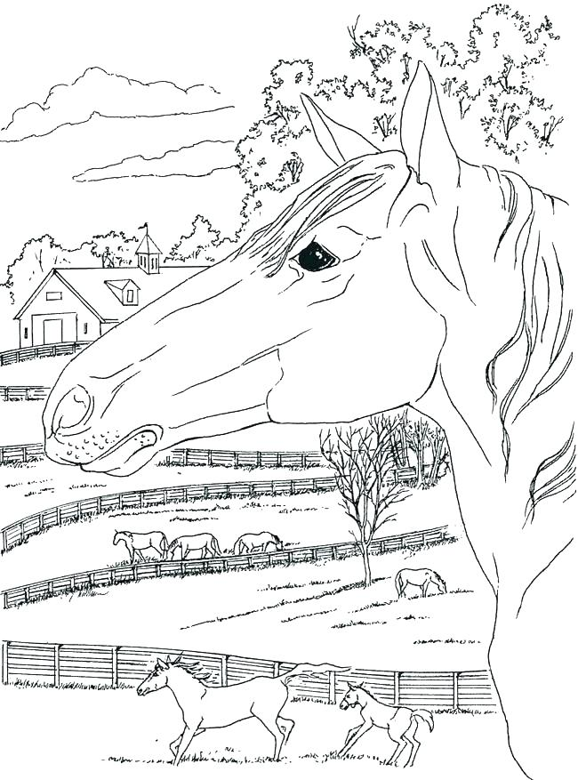 650x877 Country Flags Coloring Pages Free Country Coloring Pages Country