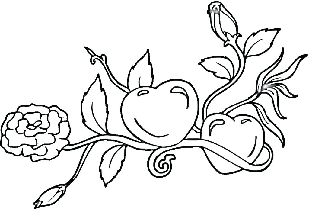 1024x692 Flames Coloring Pages Flame Coloring Page Fire Hydrant Coloring