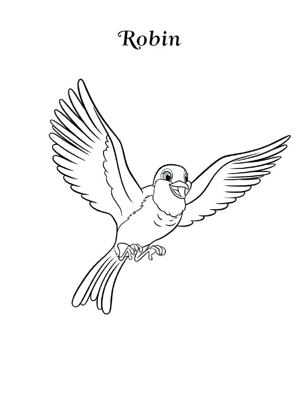 600x776 How High Can You Fly Coloring Page Parrot Is Flying Coloring Page