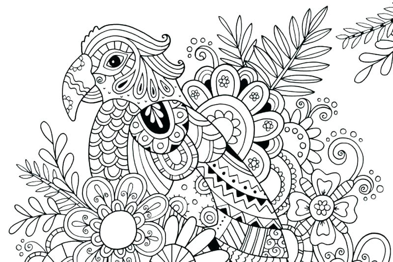 800x533 Flip Flop Coloring Page Coloring Pages Of Butterflies For Adults