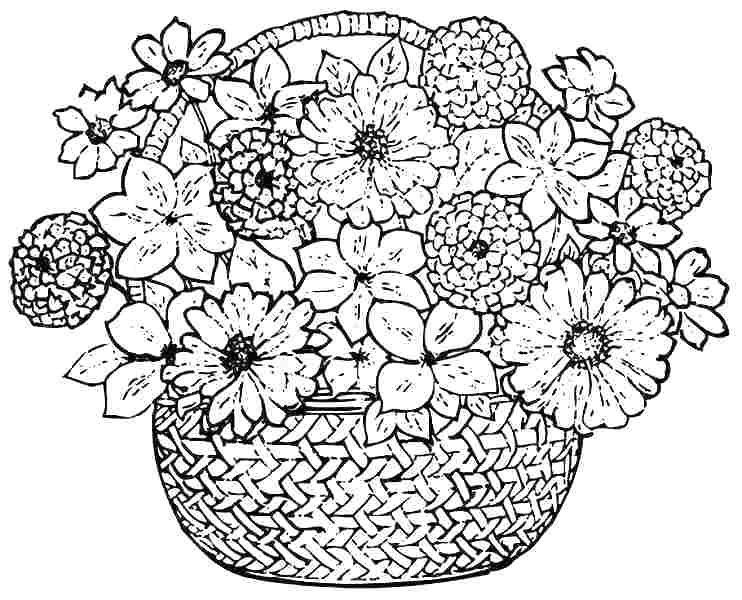 742x600 Spring Flowers Coloring Pages Free Kids Coloring Flowers Coloring