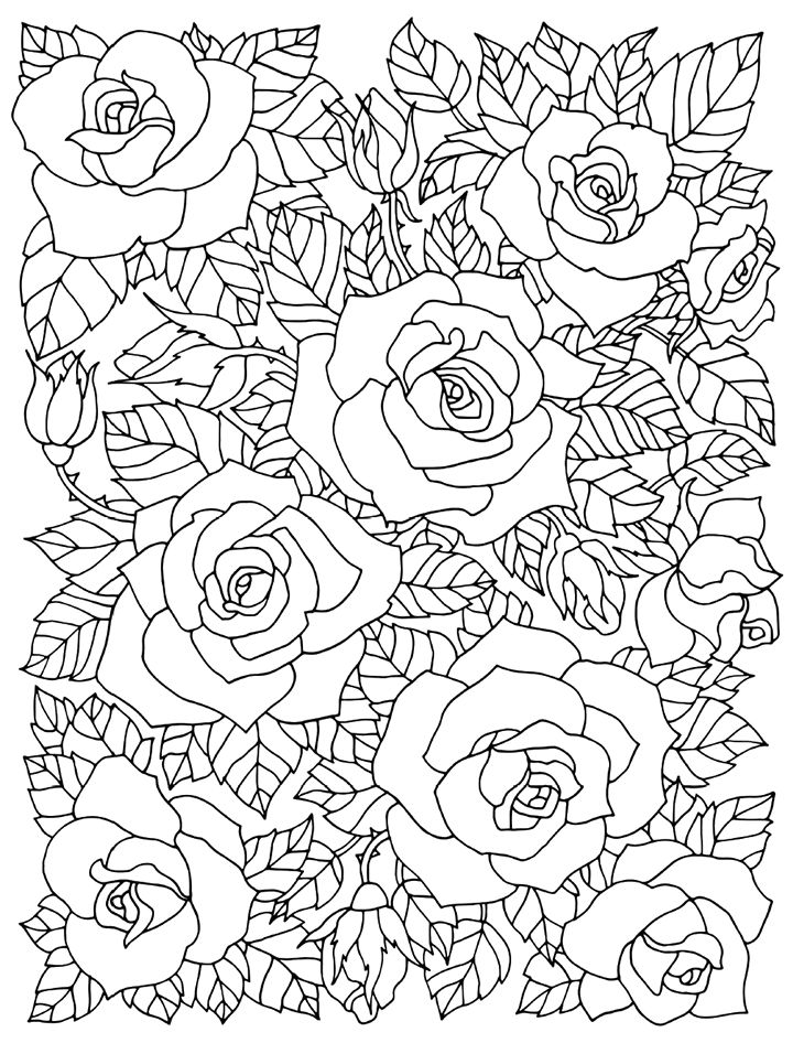 720x946 Best Floral Coloring Pages For Adults Images